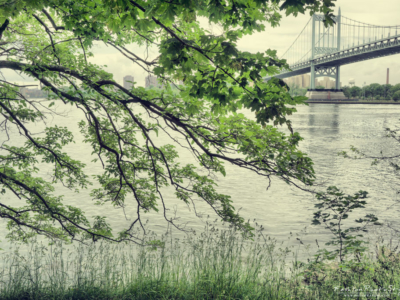 viaggio fotografico – New York